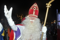 2014-15-11 Sinterklaas intocht (186)